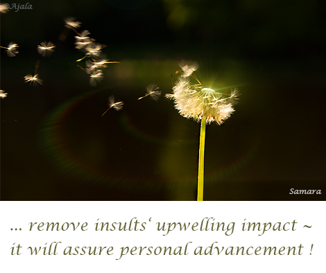 remove-insults-upwelling-impact--it-will-assure-personal-advancement