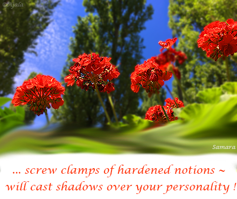 screw-clamps-of-hardened-notions--will-cast-shadows-over-your-personality