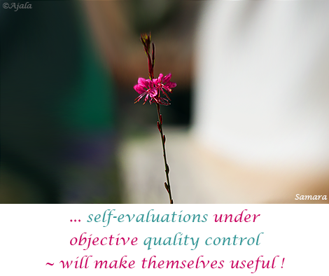 self-evaluations-under-objective-quality-control--will-make-themselves-useful