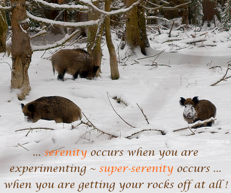 serenity-occurs-when-you-are-experimenting--super-serenity-occurs...when-you-are-getting-your-rocks-off-at-all