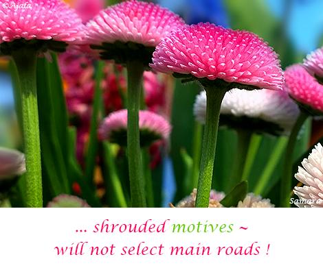 shrouded-motives--will-not-select-main-roads
