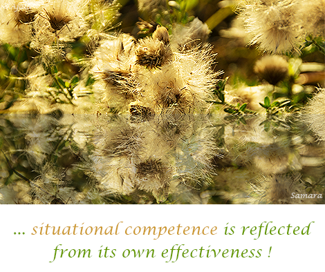 situational-competence-is-reflected-from-its-own-effectiveness