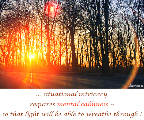 situational-intricacy-requires-mental-calmness--so-that-light-will-be-able-to-wreathe-through