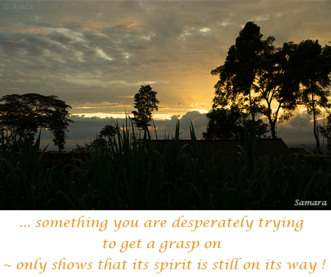 something-you-are-desperately-trying-to-get-a-grasp-on--only-shows-that-its-spirit-is-still-on-its-way