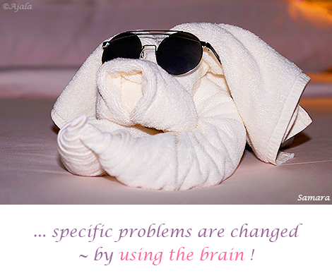 specific-problems-are-changed--by-using-the-brain