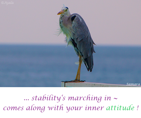 stability-s-marching-in--comes-along-with-your-inner-attitude