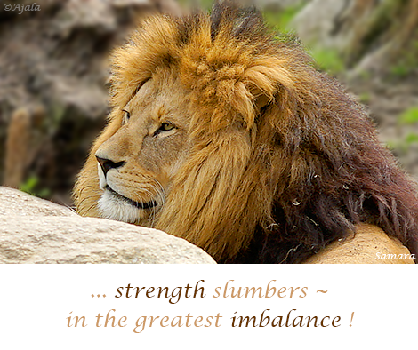 strength-slumbers--in-the-greates-imbalance