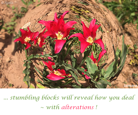 stumbling-blocks-will-reveal-how-you-deal--with-alterations