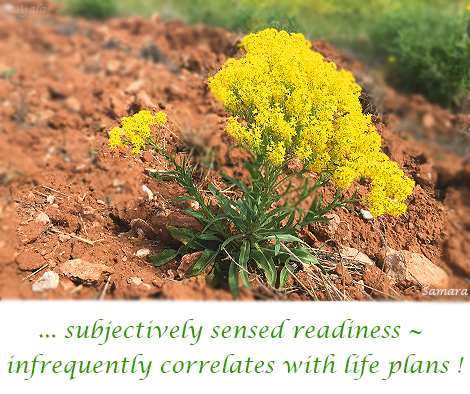 subjectively-sensed-readiness--infrequently-correlates-with-life-plans