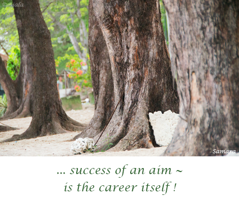success-of-an-aim--is-the-career-itself