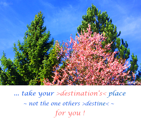 take-your-destination-s-place--not-the-one-others-destine--for-you
