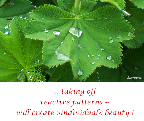 taking-off-reactive-patterns--will-create-individual-beauty