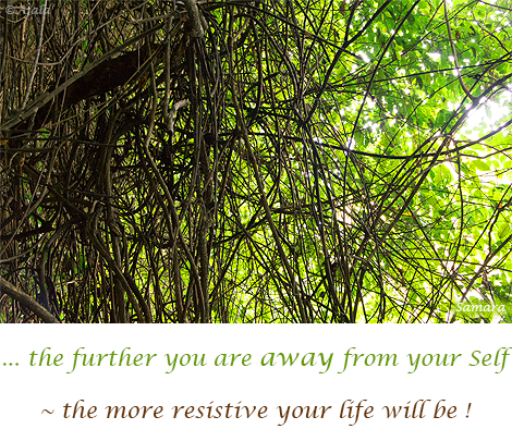 the-further-you-are-away-from-your-Self--the-more-resistive-your-life-will-be