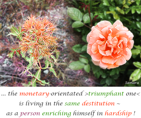 the-monetary-orientated-triumphant-one-is-living-in-the-same-destitution--as-a-person-enriching-himself-in-hardship
