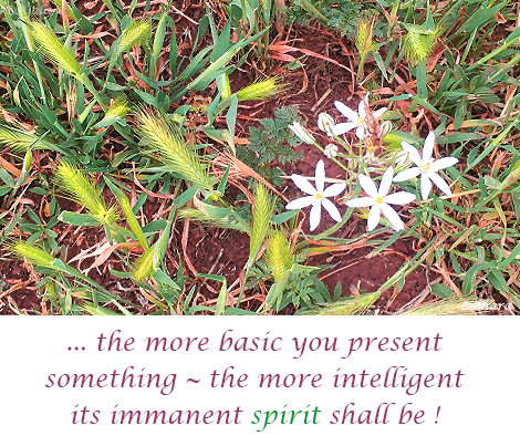 the-more-basic--you-present-something--the-more-intelligent-its-immanent-spirit-shall-be