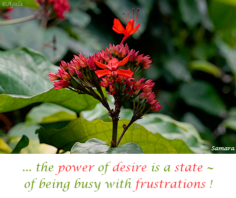 the-power-of-desire-is-a-state--of-being-busy-with-frustrations