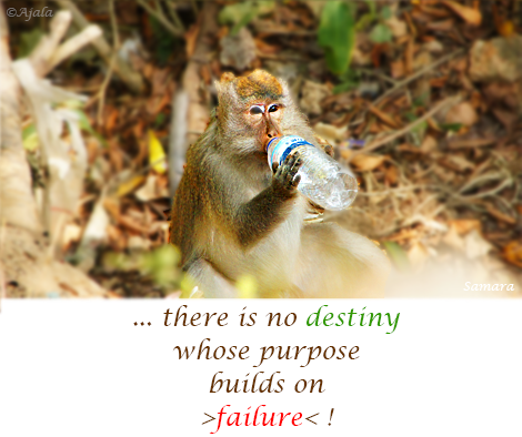 there-is-no-destiny-whose-purpose-builds-on-failure