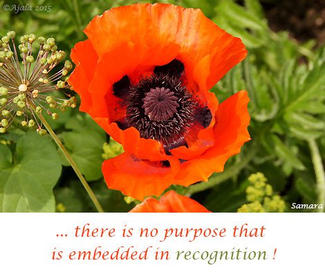 there-is-no-purpose-that-is-embedded-in-recognition
