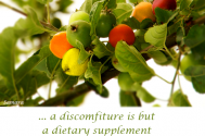 a-discomfiture-is-but-a-diatary-supplement-for-maturing-time