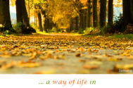 a-way-of-life-in-repeat-mode-is-not-inhabited