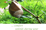 comfort-unfolds-during-your-being