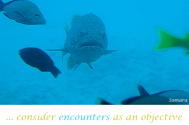 consider-encounters-as-an-objective-to-encounter-yourself