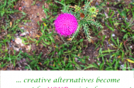 creative-alternatives-become-apparent-by-YOUR-point-of-presence