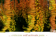criticism-will-activate-pain--only-when-distortions-of-reality-take-effect