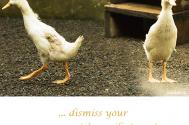 dissmiss-your-assessments-consiliator