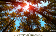 external-success-will-spawn-flaws-into-your-notions