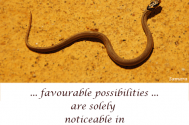 favourable-possibilities-are-solely-noticeable-in-their-entirety