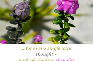 for-every-single-toxic-thought--multiple-healing-thoughts-exist-as-well