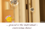 graced-is-the-individual--exercising-choice-over-his-ideas