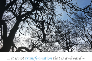 it-is-not-transformation-that-is-awkward--but-rather-having-concerns-as-an-image-of-wellness