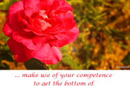 make-use-of-your-competence-to-get-the-bottom-of-your-requirements-and-your-limits