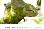 marksmanship-of-sensitive-spots--will-unfurl-all-types-of-impact