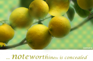 noteworthiness-is-concealed-behind-defensive-mechanisms