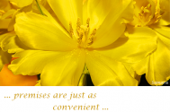 premises-are-just-as-convenient-as-casting-artificial-flowers