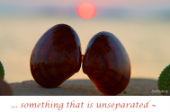 something-that-is-unseparated--can-find-its-significant-other