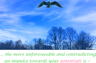 the-more-unforeseeable-and-contradicting-an-impulse-towards-your-potentials-is--the-more-convenient-their-solutions-will-be