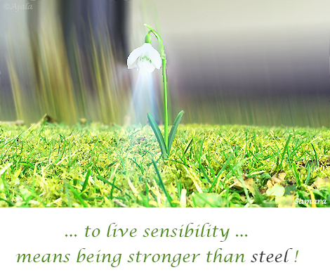 to-live-sensibility-means-being-stronger-than-steel
