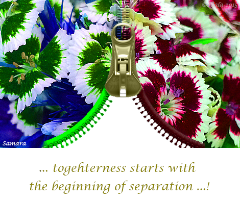togetherness-starts-with-the-beginning-of-separation