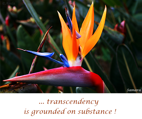transcendency-is-grounded-on-substance