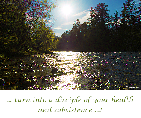 turn-into-a-disciple-of-your-health-and-subsistence