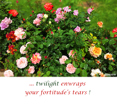 twilight-enwraps-your-fortitude-s-tears