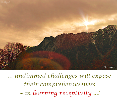 undimmed-challenges-will-expose-their-comprehensiveness--in-learning-receptivity