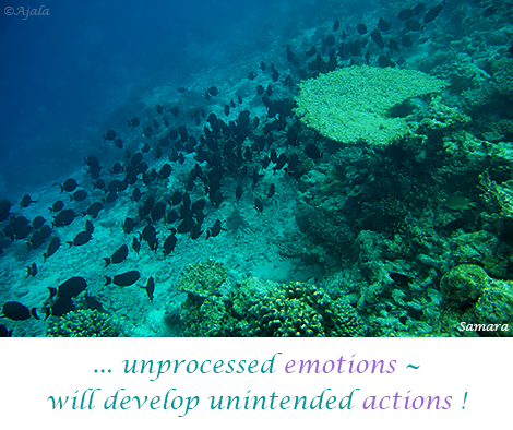 unprocessed-emotions--will-develop-unintended-actions