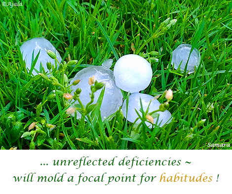 unreflected-deficiencies--will-mold-a-focal-point-for-habitudes
