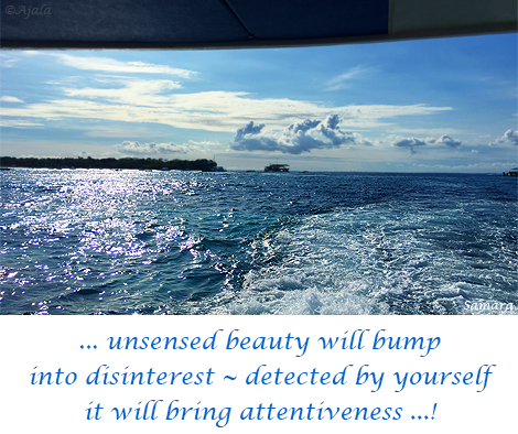 unsensed-beauty-will-bump-into-disinterest--detected-by-yourself-it-will-bring-attentiveness