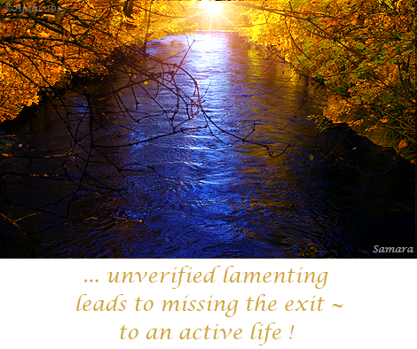 unverified-lamenting-leads-to-missing-the-exit--to-an-active-life